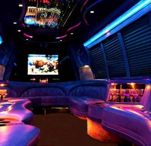18 Passenger Party Bus Rental San Jose
