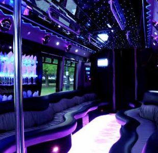 22 People Party Bus Limo San Jose